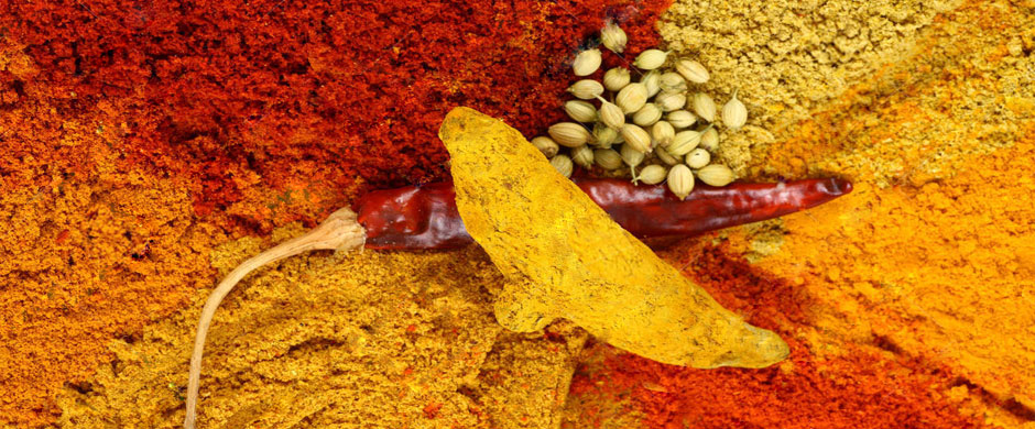 spices india infotech